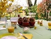 Pfitzauf zu Ostern: Zimtstangen, Ausstecherle in der Form des Osterhasen, Birnenstücke